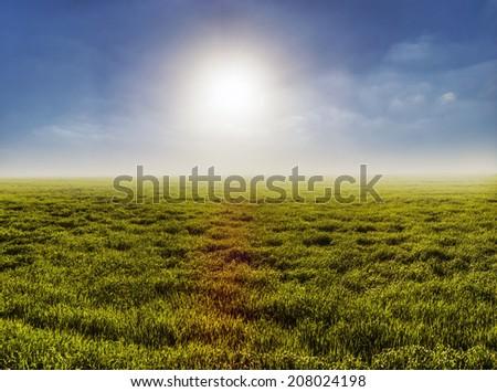 Green field with sunny sky, cloudy sky  - stock photo