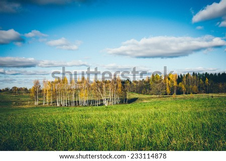 green field with trees in the autumn in country. Vintage photography effect.Retro grainy color film look. - stock photo