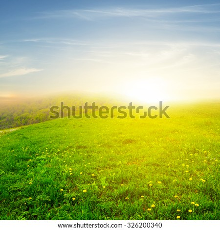 green fields at the sunset - stock photo