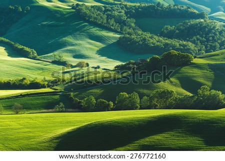 Green fields in spring sunny day - stock photo