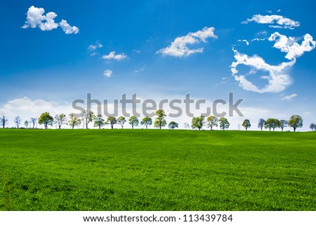 Green fields with trees on the horizont, under blue sky - stock photo