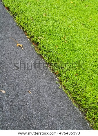green filed and street