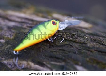 Green fishing bait on old tree trunk, macro shot - stock photo