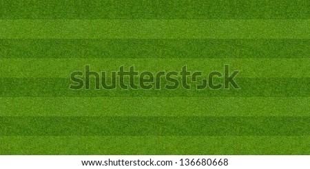Green flat field astro fine grain pitch - stock photo