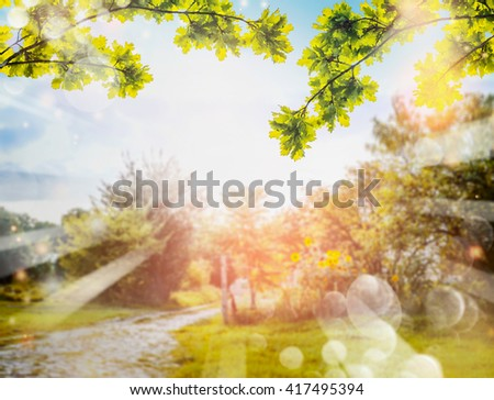 Green foliage over Country nature background with sun rays and bokeh. Summer countryside nature background - stock photo