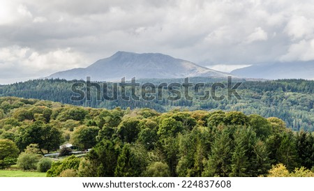 Green forest and the mountain of Moel Siabod in the distance - stock photo