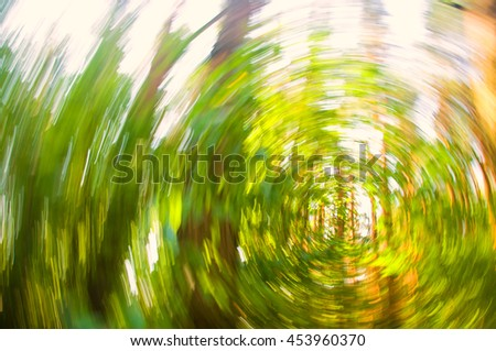 Green forest, radial blur background