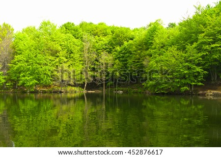 Green forest reflection on water. A lake in Catalonia (Spain)