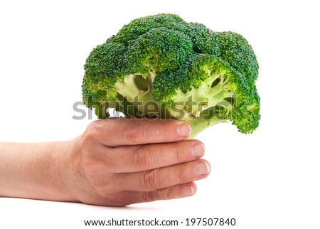 Green fresh broccoli in hands on white background - stock photo