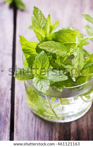 Green fresh mint on the wooden table, selective focus