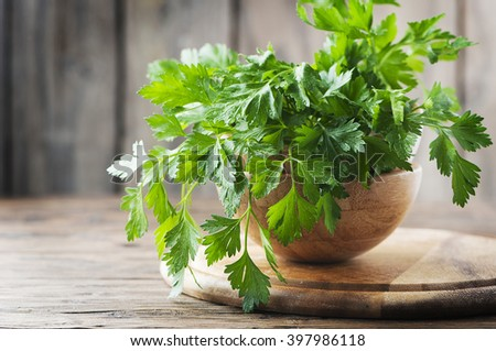 Green fresh parsley on the wooden table, selective focus - stock photo