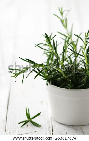 Green fresh rosemary on the wooden table, selective focus - stock photo