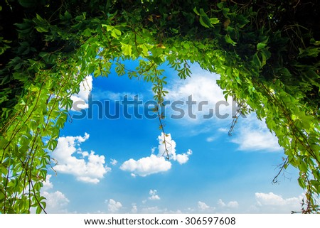 Green garden arch, archway at the end of the green plant tunnel, blue sky and bright sunny day - stock photo
