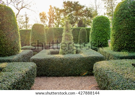 Green garden backyard decor on shining evening - stock photo