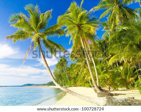 Green Getaway Beautiful Beach - stock photo