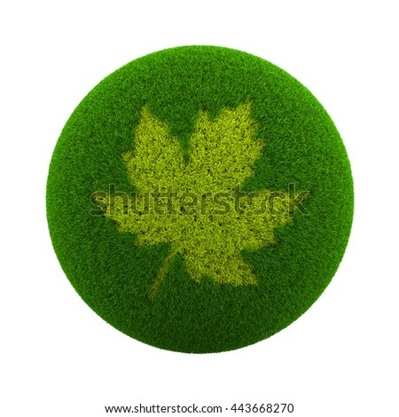 Green Globe with Grass Cutted in the Shape of a Leaf 3D Illustration Isolated on White Background