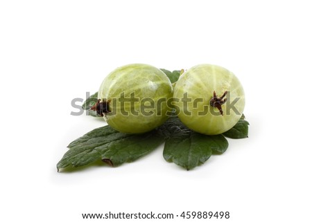 Green gooseberries on leaves