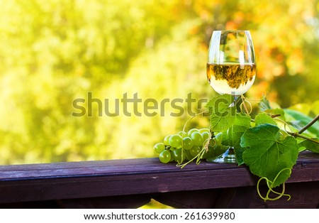 green grape and sweet wine in vineyard - stock photo