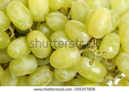 green grapes - stock photo