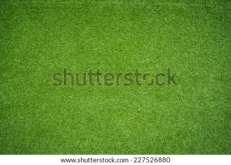 green grass - stock photo