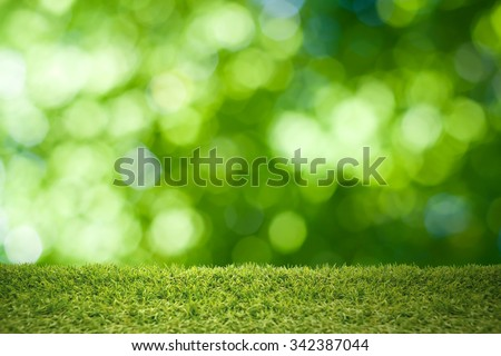 Green grass abstract natural background.