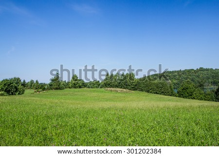 Green grass and blue sky landscape. - stock photo
