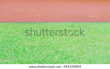 Green grass and concrete pink wall background. Exterior natural green grass and concrete sandstone wall with tree fence decorative background in garden - stock photo