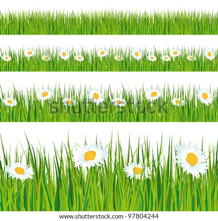 Green grass and daisies strips. Foregrounds collection. - stock photo
