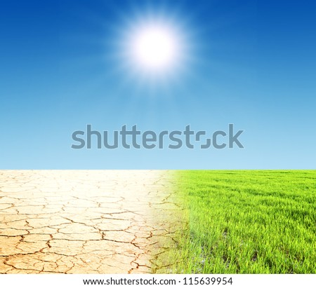 Green grass and dry desert land - stock photo