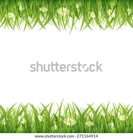 Green grass and flowers on white background, illustration. - stock photo