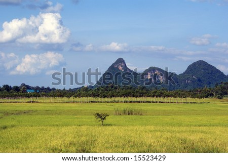 Green grass and hills in south Thailand