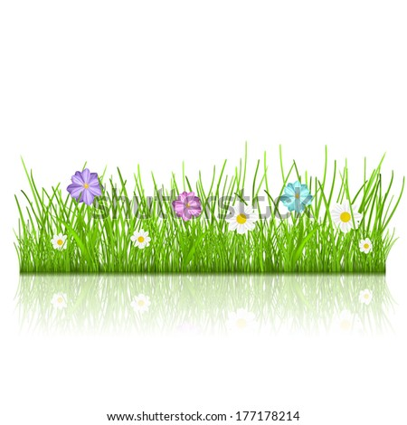 Green grass and multicolored flowers with reflection. Raster version. - stock photo