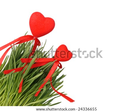 Green grass and red hearts on a white background. Valentines day card.