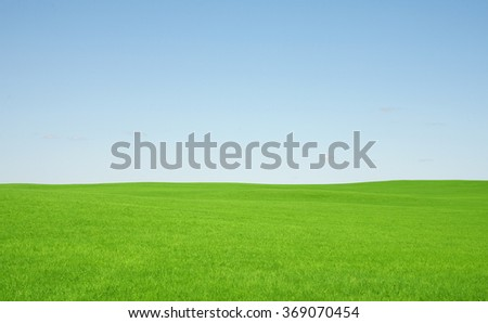 Green grass and sky  - stock photo