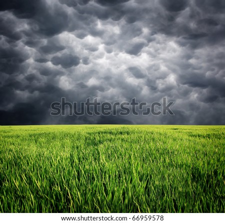 Green grass and storm sky with clouds