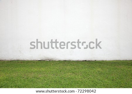 Green Grass and White Wall - stock photo