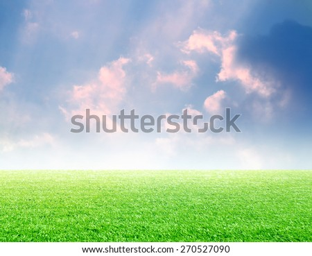 Green grass as foreground with blue cloudy sky background - stock photo