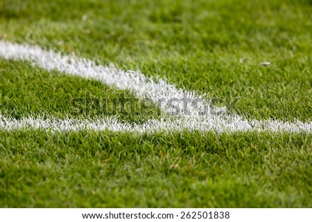 Green grass at the corner of the football (soccer) field