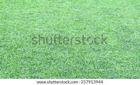 green grass background from soccer field - stock photo