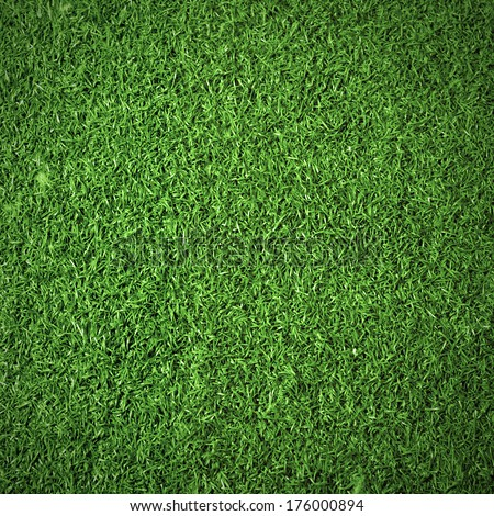 Green grass background texture. Top view - stock photo