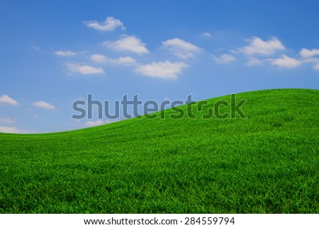green grass blue sky - stock photo
