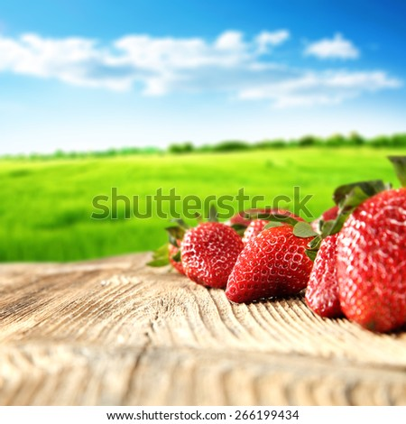 green grass blue sky and fruits  - stock photo