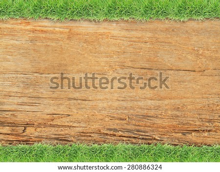 Green grass border on old wood background