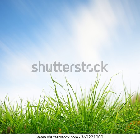 Green grass closeup with sky on background. Clouds in blurred motion due to long exposure - stock photo