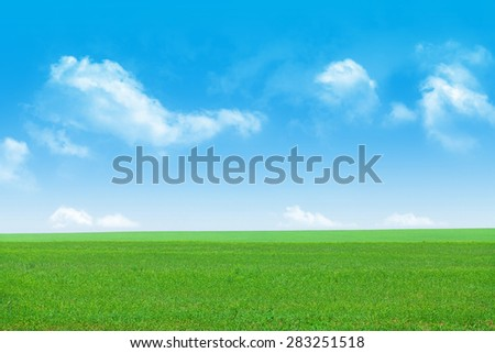 Green grass field and blue sky background - stock photo