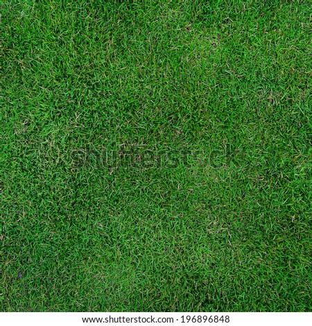 Green grass field for football  - stock photo