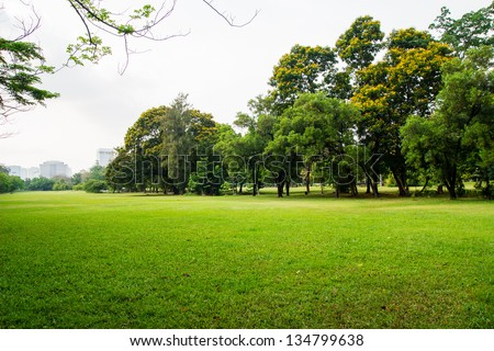green grass field in big city park - stock photo