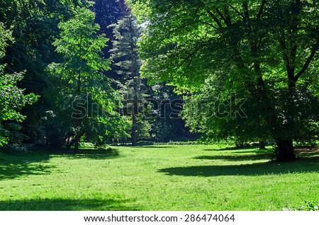 green grass field in big city park - stock photo