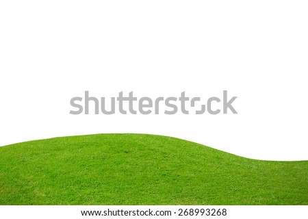 Green grass field on white background - stock photo