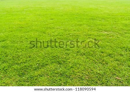 Green grass field seamless background texture - stock photo